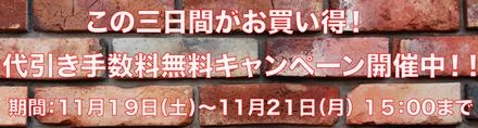 11-19-11-21-2.jpg