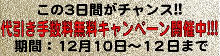 12-daibiki.jpg