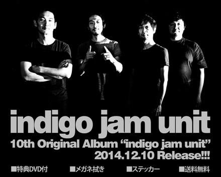 indigo-release-post-560.jpg
